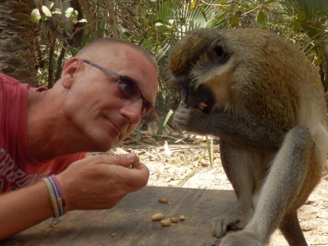 Bibo hat nen Affen