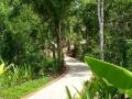 Ein Weg im Resort
