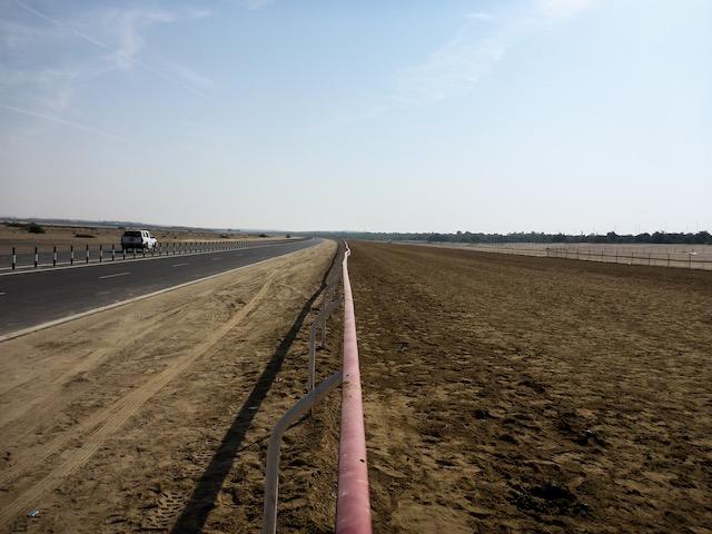 Abu-Dhabi-Camel-Race-Track-01