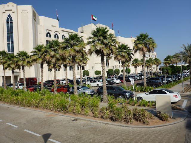 Abu-Dhabi-Eastern-Mangroves