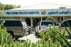 Abu-Dhabi-Falcon-Klinik-01
