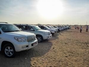 Abu-Dhabi-Half-Day-Safari-02