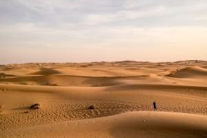 Abu-Dhabi-Half-Day-Safari-11