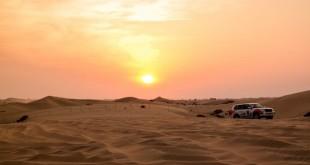 Abu-Dhabi-Half-Day-Safari-12