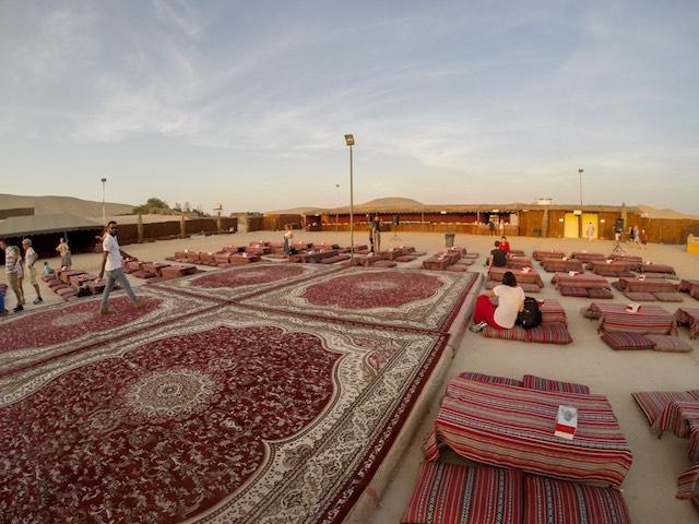 Abu-Dhabi-Half-Day-Safari-13