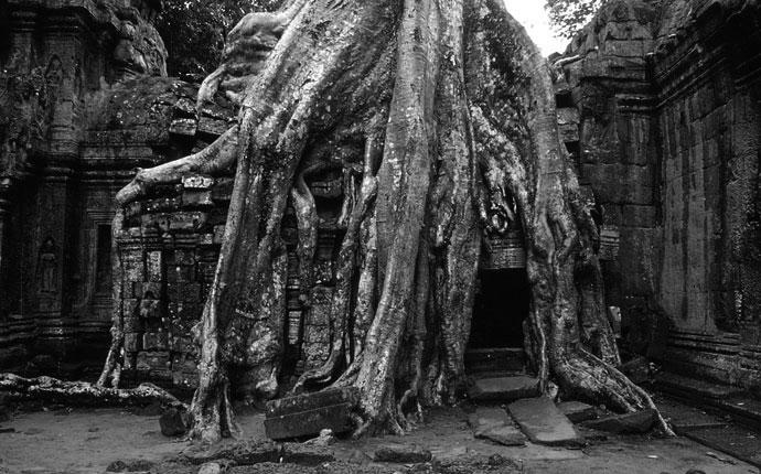 Angkor2sw