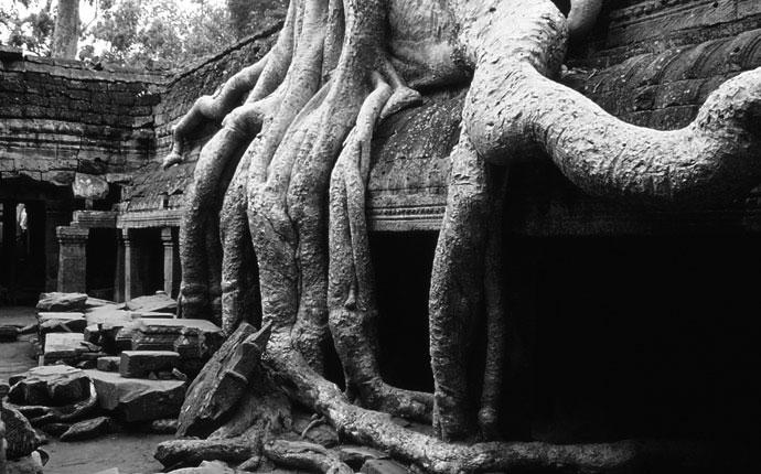 Angkor3sw