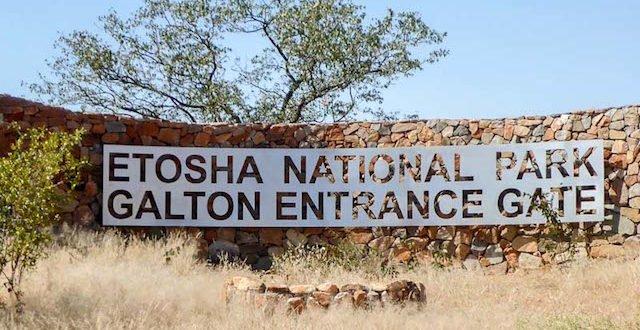 Etosha-Titelbild