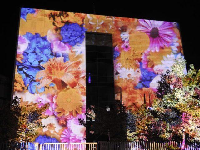 Festival-of-lights-08
