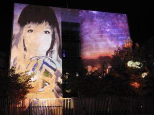 Festival-of-lights-09