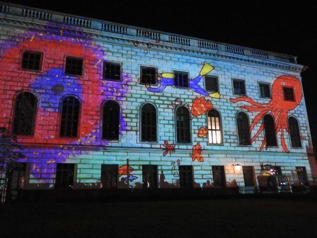 Festival-of-lights-23