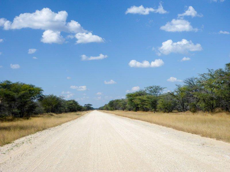 Grootfontein-Baobab-Tree-01