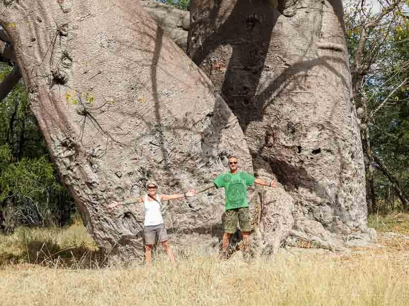 Grootfontein-Baobab-Tree-05