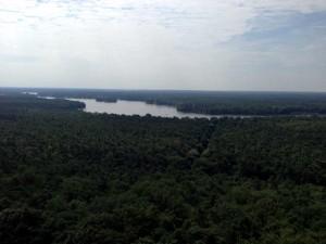 Ausblick vom Müggelturm nach Südosten