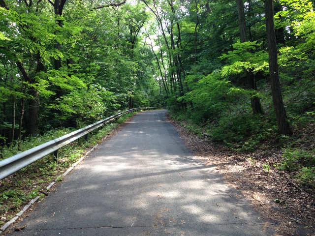 Fußweg zum Müggelturm