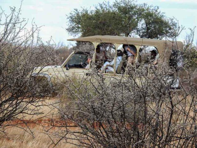 Kalahari-Waking-Trail-01