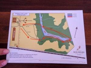 Kalahari-Waking-Trail-02