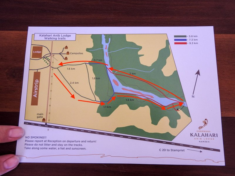 Kalahari-Waking-Trail-02