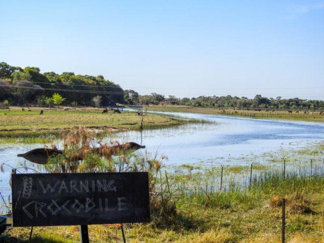 Okavango-Delta-01