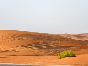 Al Ain Wüste