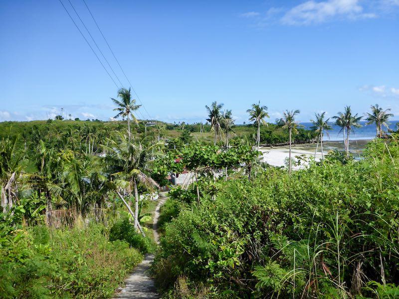 Malapascua einsamer Strand