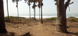 The Smiling Coast of Gambia - Unser Fazit 4
