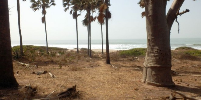 The Smiling Coast of Gambia - Unser Fazit 1