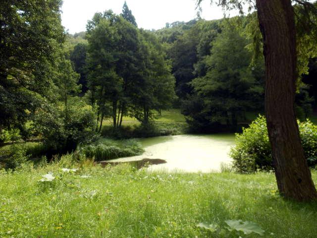 Wildpark Christianental in Wernigerode