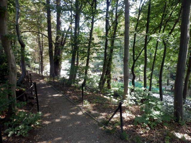Wildpark Wernigerode