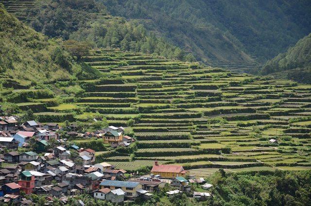 Philippinen-Reisterrassen-Titelbild