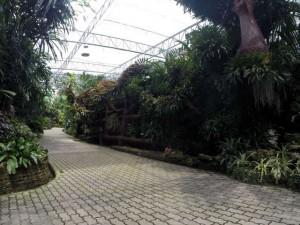 Royal-Park-Rajapruek-16