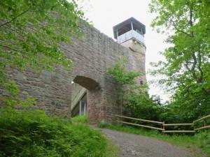 Ruine-Auersburg-04