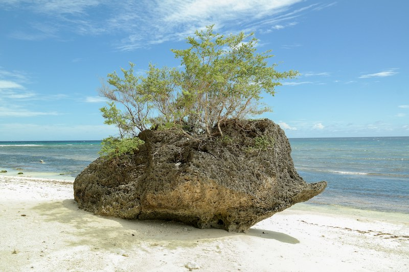 Siquijor Kagusuan Beach