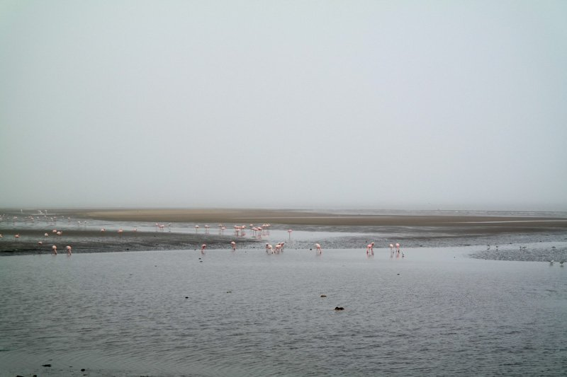 Walvis-Bay-Bootstour-02