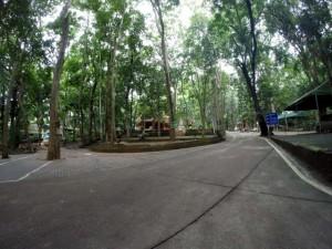 Wat-U-Mong-Chiang-Mai-1
