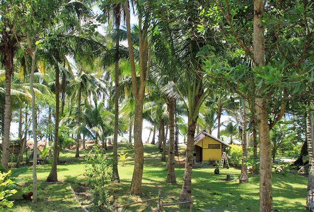 Cacnipa Island Resort