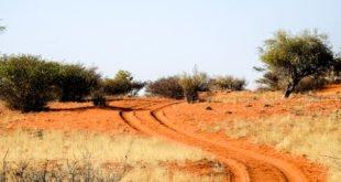 kalahari-wueste-namibia-01