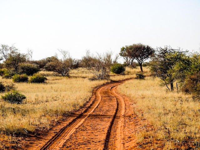 kalahari-wueste-namibia-06