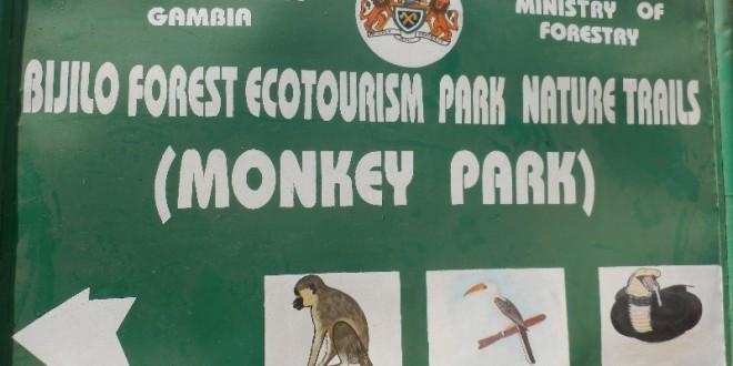Bijilo Forest Park, Serekunda 8
