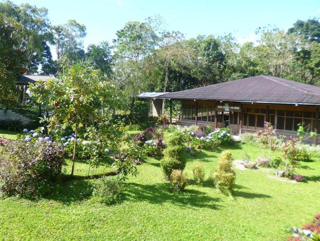 Negros North National Park