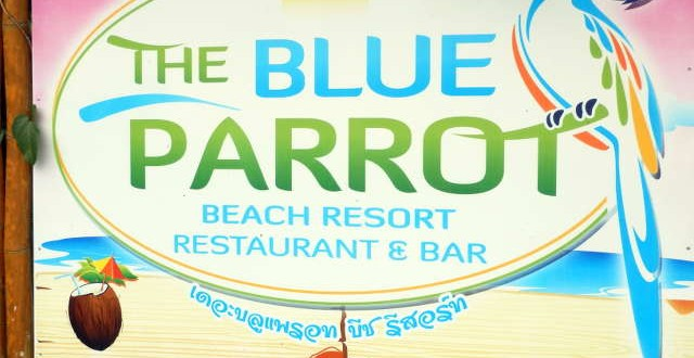 the-blue-parrot-koh-phangan-01