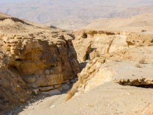 wadi-al-hasa