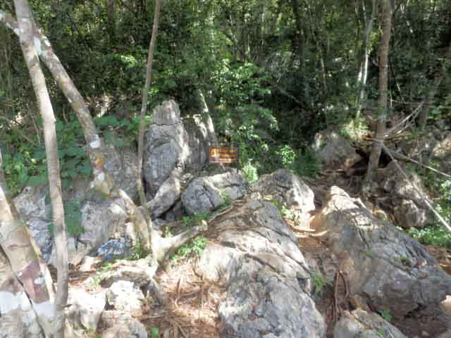 wua-ta-lap-island-15